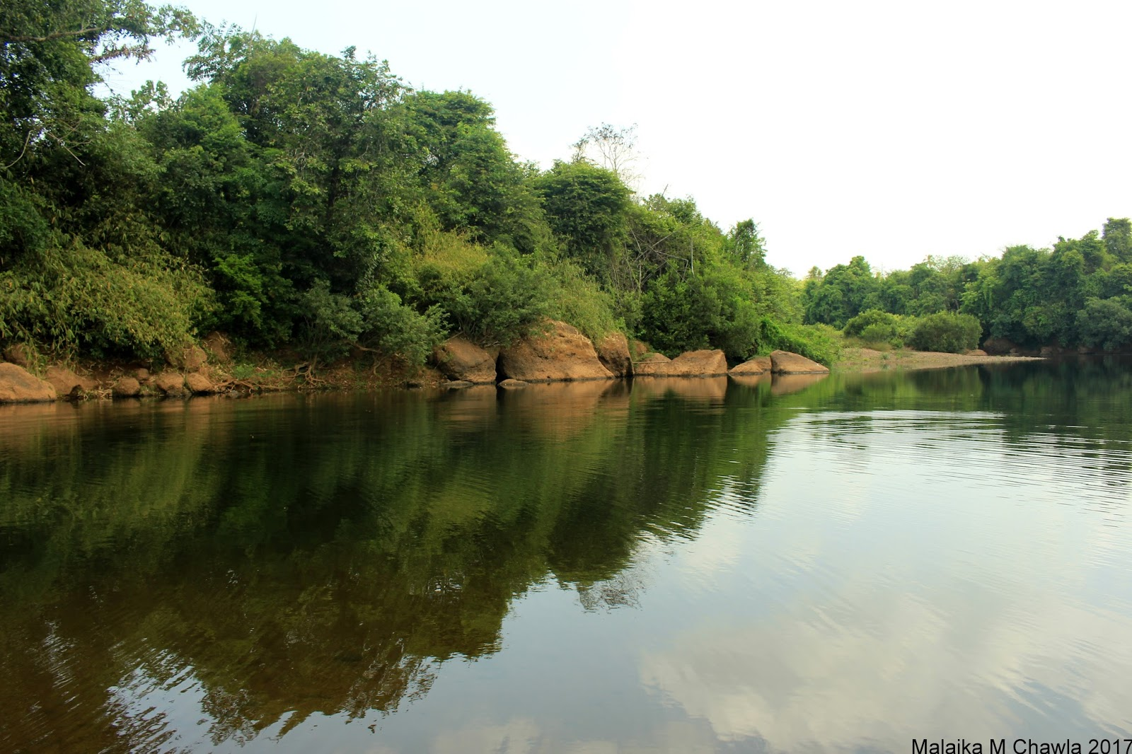 Travelling Lens: Crocodile Survey, Otter Scat and a Five ... - photo#37