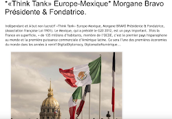 *«Think Tank» Europe-Mexique*