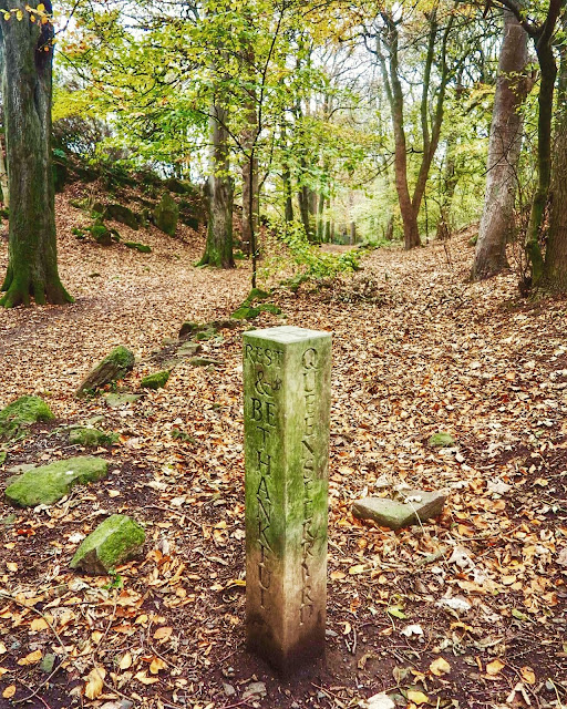 Sign post marker in the forest with autumn leaves - Corstorphine Hill, Edinburgh, Scotland