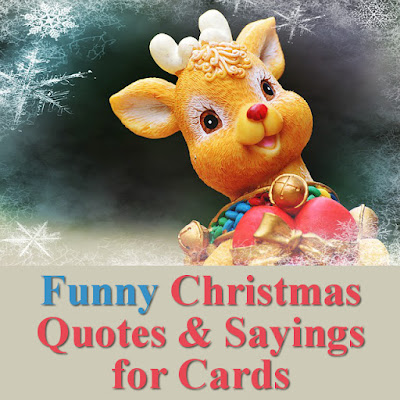 Fun funny witty sayings, sentiments, quotations for Christmas Holiday festive season