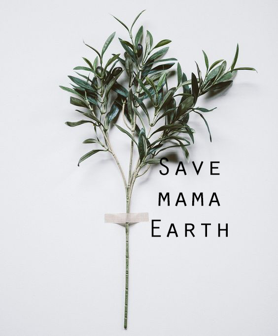 Saving the planet with your closet