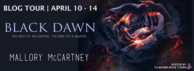 http://yaboundbooktours.blogspot.com/2017/02/blog-tour-sign-up-black-dawn-by-mallory.html