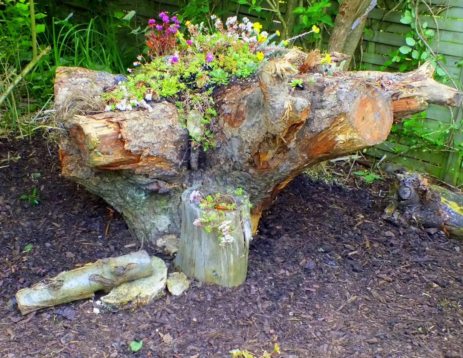 Wurzeln Entfernen Finest Wurzeln Entfernen Garten Unkraut Warum