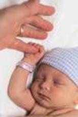 Berat Badan Bayi Asi Eksklusif