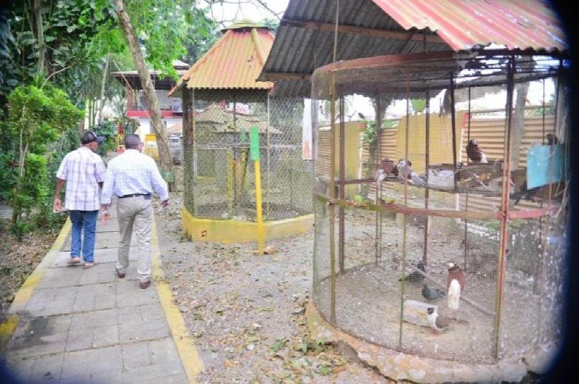 Zoológico de Moca