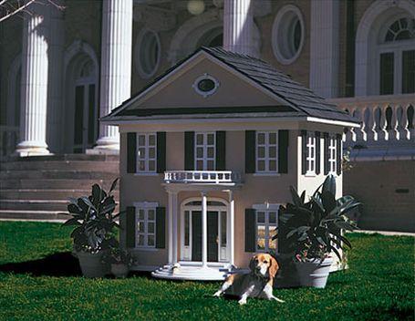 Casinha de cachorro?! Que nada, cachorro de luxo tem é mansão e até piscina!  Assim, eu até queria uma vida de cão pra mim.