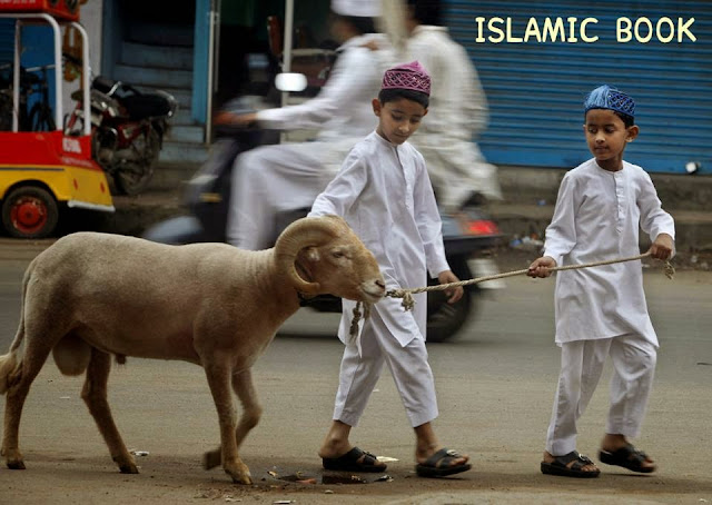 Bakra Eid HD Photos
