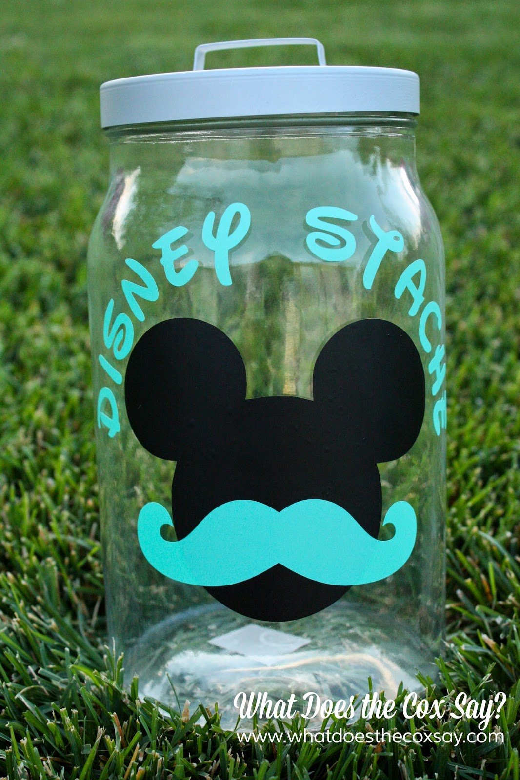 #disneystache #disney #whatdoesthecoxsay #savingsjar