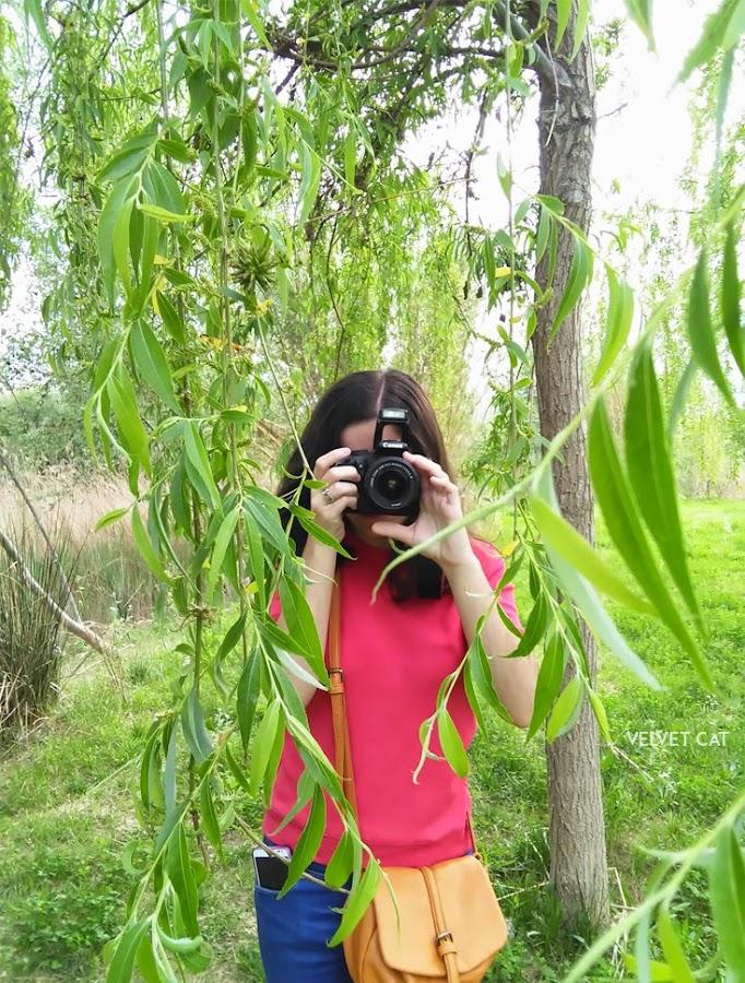 Hoy compartimos verde fotografía
