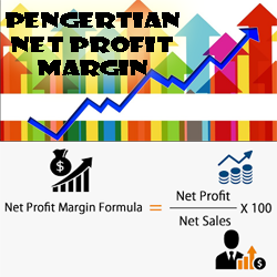 Pengertian Net Profit Margin