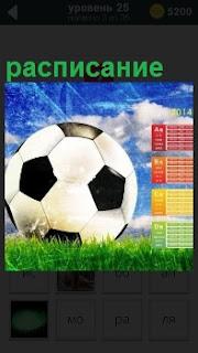 На траве положен футбольный мяч для игры и рядом доска с расписанием очередных игр, которые планируются в ближайшее время