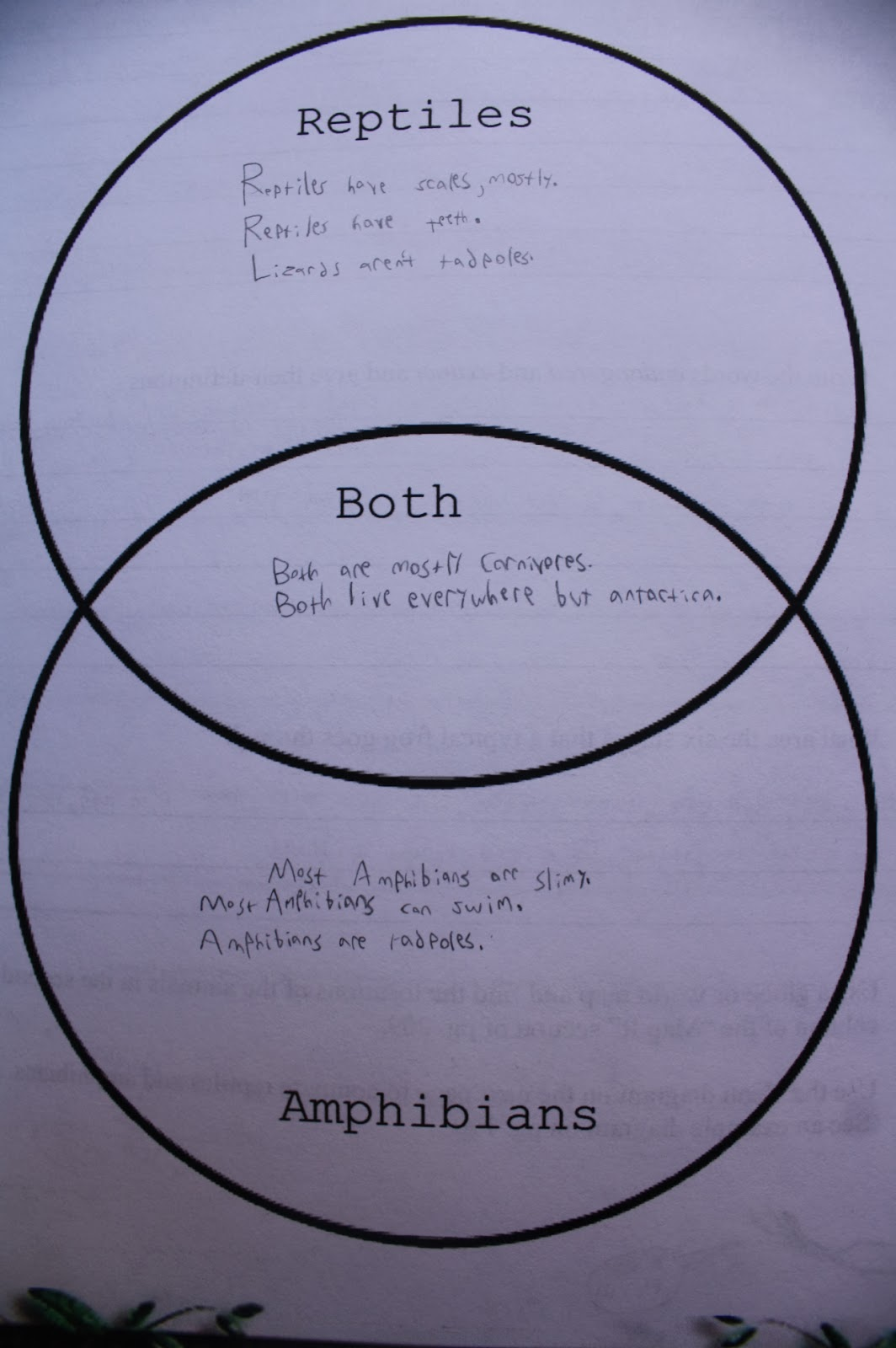 Amphibians Vs Reptiles Venn Diagram Wiring Diagrams Software And