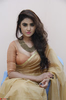 Sony Charistha in Lovely Brown Saree and Choli Spicy Pics ~  Exclusive 06.JPG