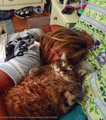 Auf Bett entspannen mit Katze lustig - Schlaf Bilder