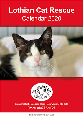 cover of the Lothian Cat Rescue 2020 calendar, with a photo of a black and white cat