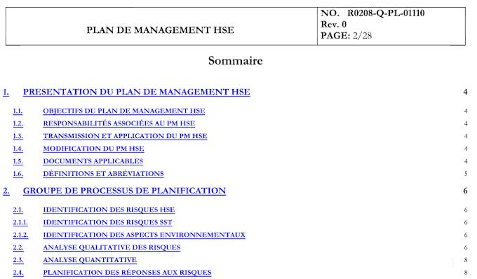 Modèle Plan HSE  [.doc]