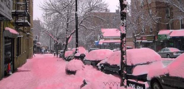 Nieve rosa