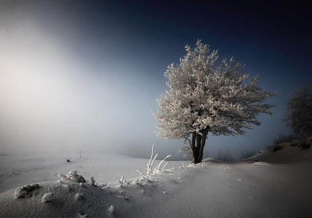 Foto de Stanislaw Jawor