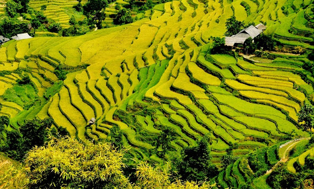 Ha Giang - The highest areas of Viet Nam 3