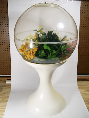 Over time, the obsession with terrariums faded, but it returned in the 1960s and '70s...