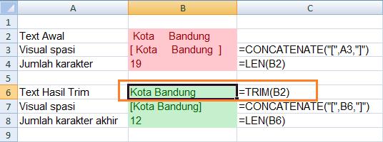 Fungsi Excel TRIM