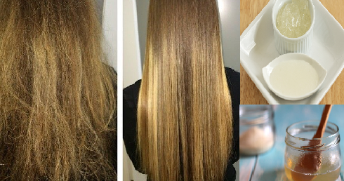 best homemade treatment to repair your damaged hair lvs