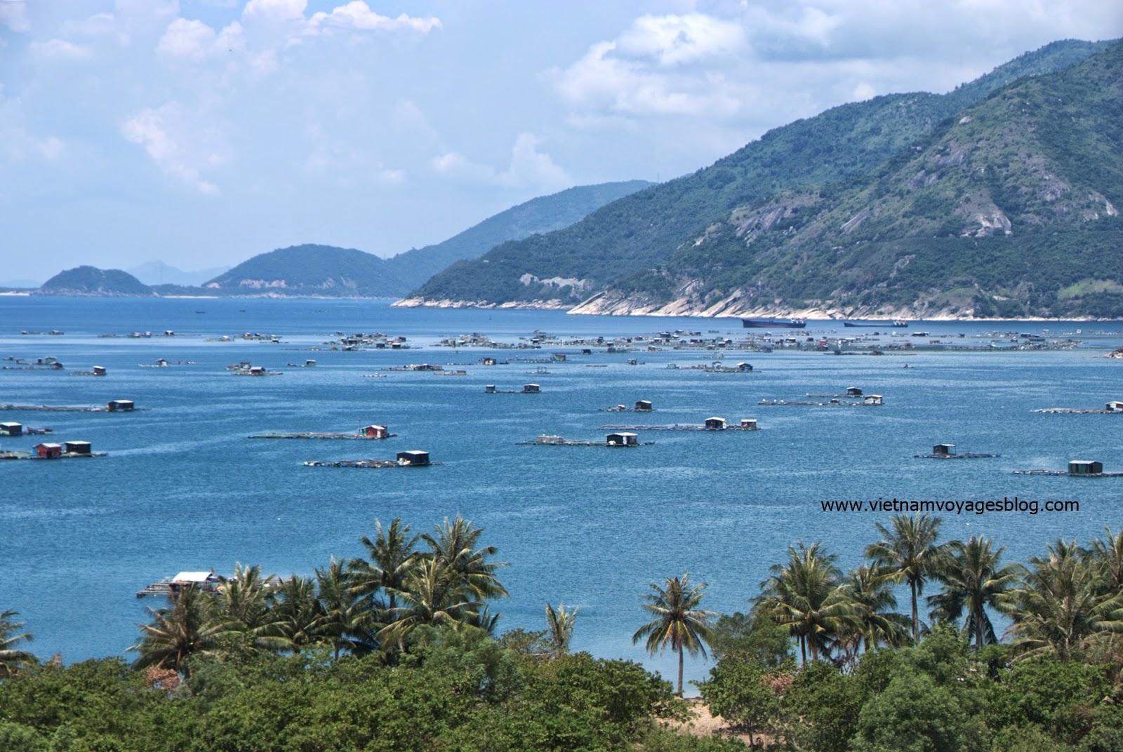 Nuôi cá bè ở Vịnh Vũng Rô