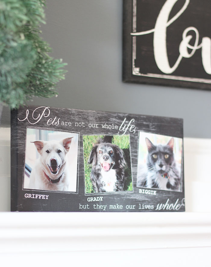 I love this canvas print so much. It can hang on the wall or be displayed on a shelf or mantle. Your pet photos will be beautifully printed on canvas which ... & 5 Personalized Pet Gifts Your Valentine Will Love | Sunny Day Family