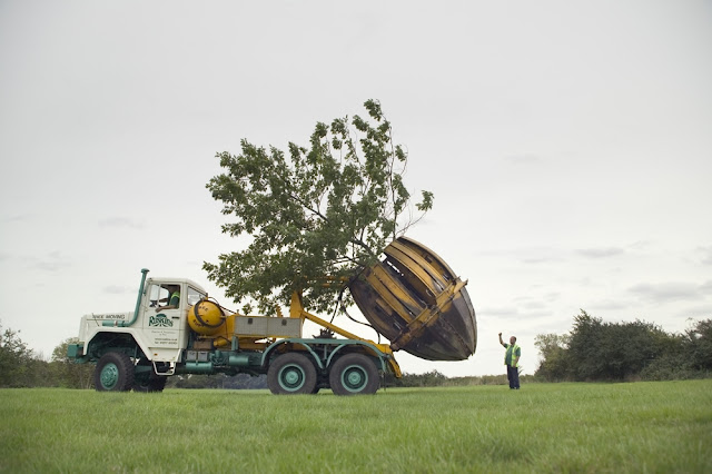 Tree Spades: These Machines Can Move Trees Without Cutting Them
