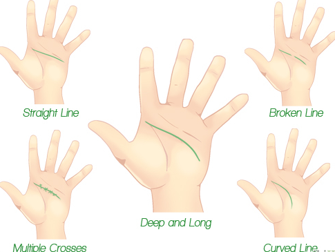 Cara Membaca Karakter Seseorang Melalui Garis Tangan (Palmistry) 4_