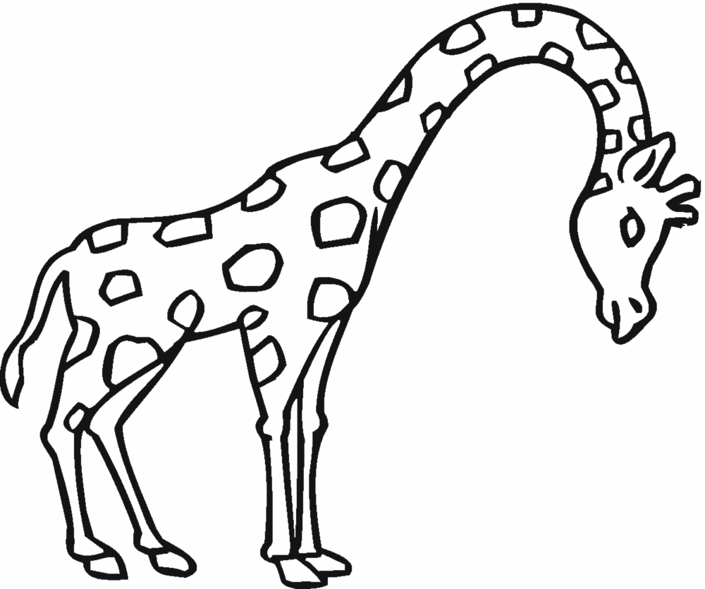 Maestra de infantil animales salvajes para colorear for Animal coloring pages giraffe