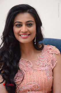 Actress Neha Hinge Stills in Pink Long Dress at Srivalli Teaser Launch  0082.JPG