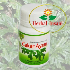 Kapsul Cakar Ayam Herbal Insani