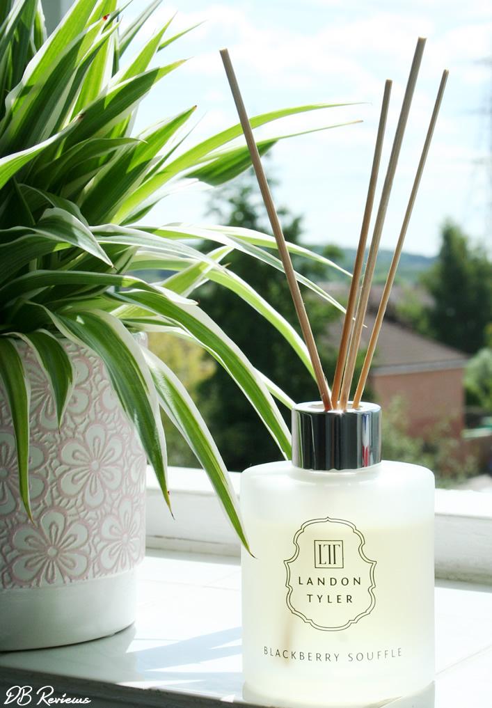 Landon Tyler Home Fragrance Reed Diffuser