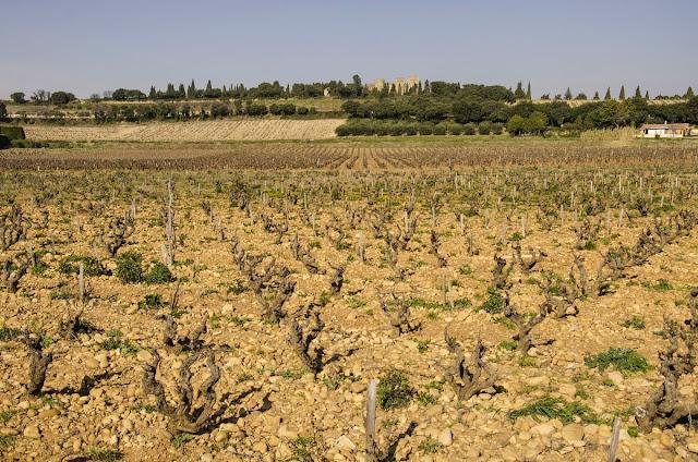 Vinuri Châteauneuf-du-Pape Provence Franta