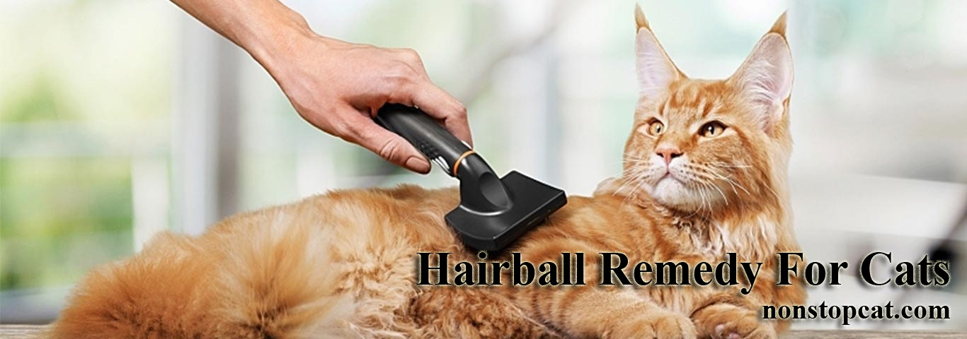 Hairball Remedy For Cats