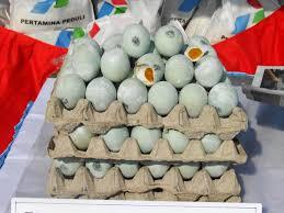 Bisnis Usaha Kecil Telur Asin Untuk Pemula dan Cetak Untung Besar