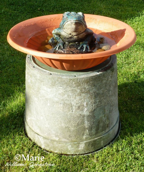 Shallow planter diy bird bath on a large upturned plant pot recycled pedestal