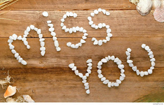 miss you created by small white stones on wooden bench