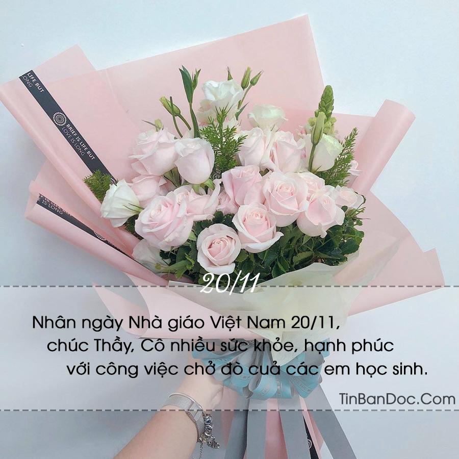 STT 20/11, Status & Lời Chúc Ý Nghĩa Ngày Nhà Giáo Việt Nam 20-11