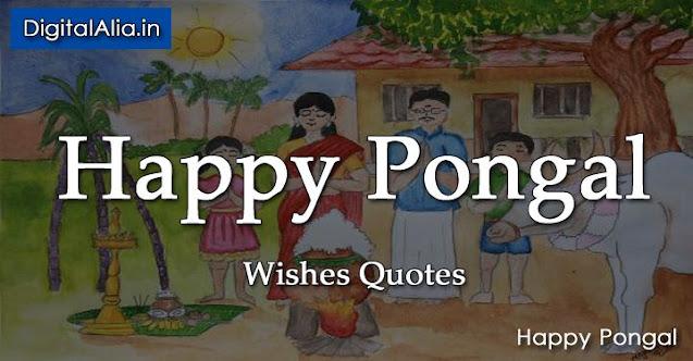 pongal quotes, pongal wisehs quotes, pongal quotes images, pongal quotes in english, pongal quotes in tamil, pongal quotes in telugu, pongal greeting cards, thai pongal quotes, muttu pongal quotes