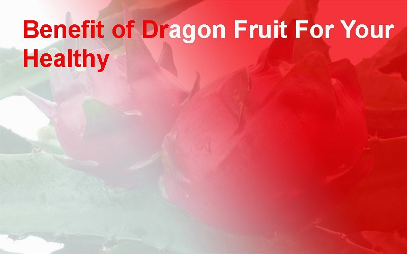 Benefit of Dragon Fruit For Your Healthy