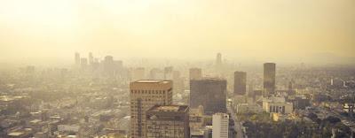 Contaminación efectos nocivos