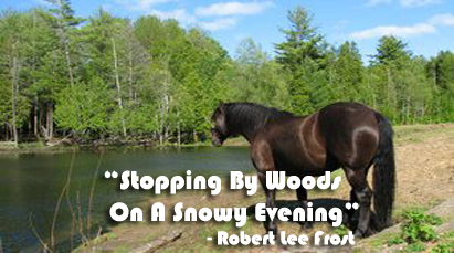 Stopping By Woods On A Snowy Evening Summary Dhan Raj S Blog