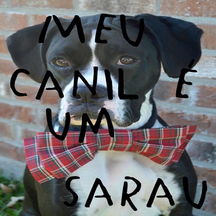 Meu Canil é um Sarau