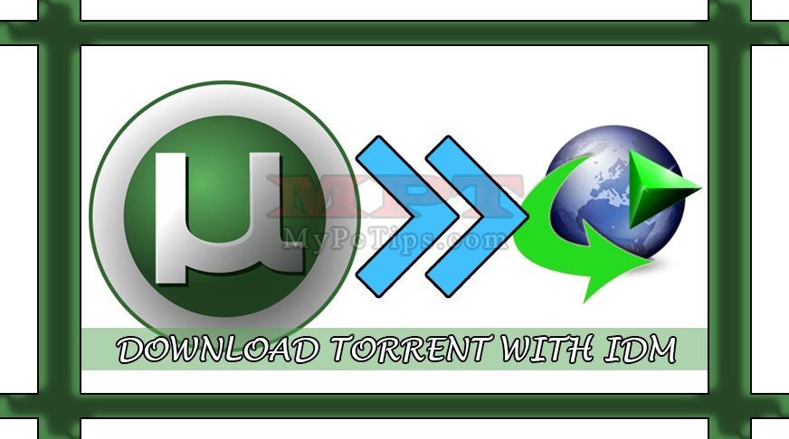 torrent movies download with idm
