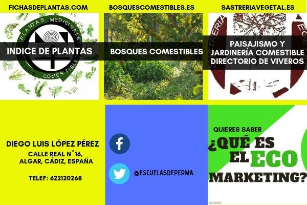 Consultor Eco Seo, algunos de nuestros proyectos Green Marketing,