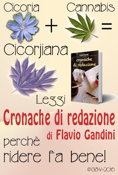 Cronahce di redazione, Flavio Gandini