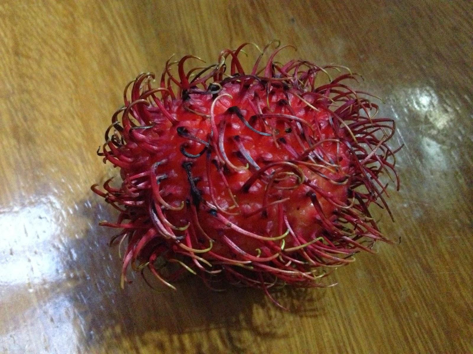 De Rica Mamon Costa Frutas