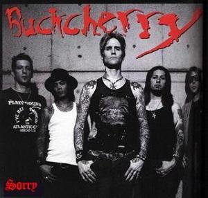 Buckcherry - Sorry:歌詞+中文翻譯 - 音樂庫
